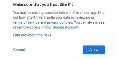 Google Site Kit Allow